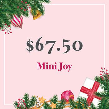 Mini Joy Gift Voucher for $67.50